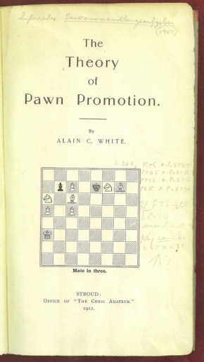 The Theory of Pawn Promotion